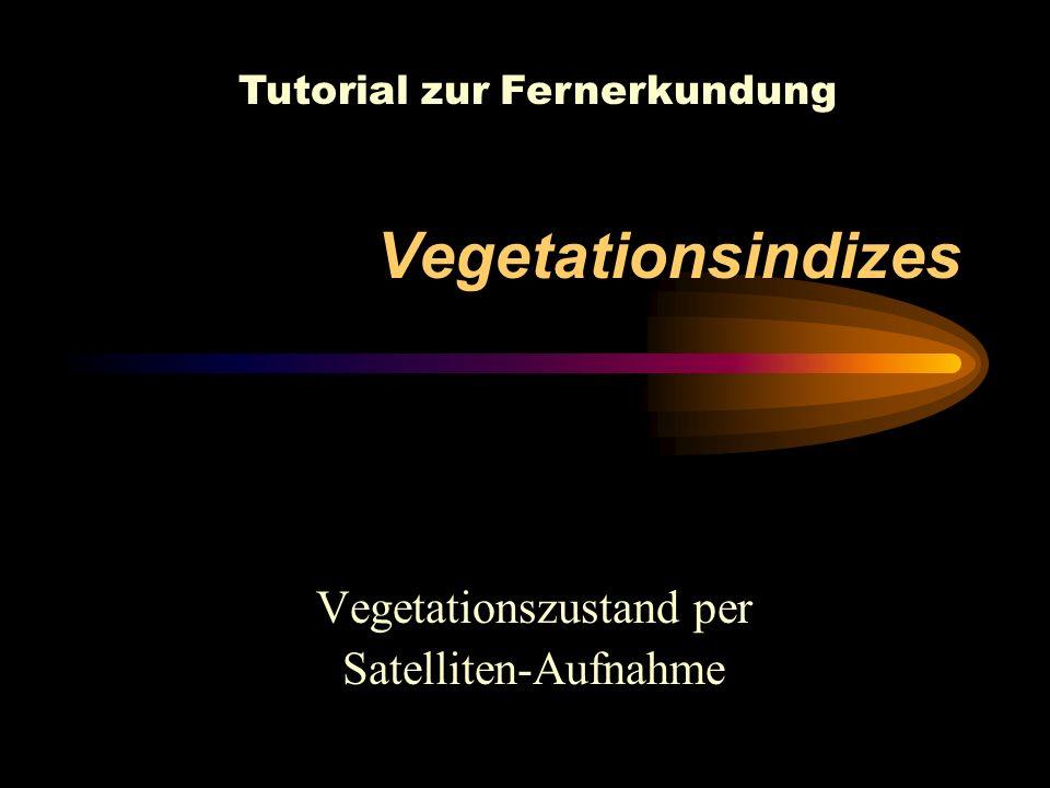 Vegetationszustand per Satelliten-Aufnahme