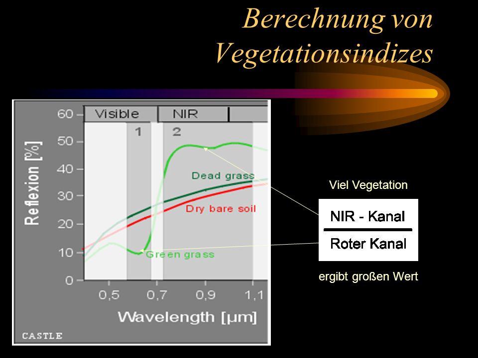 Berechnung von Vegetationsindizes