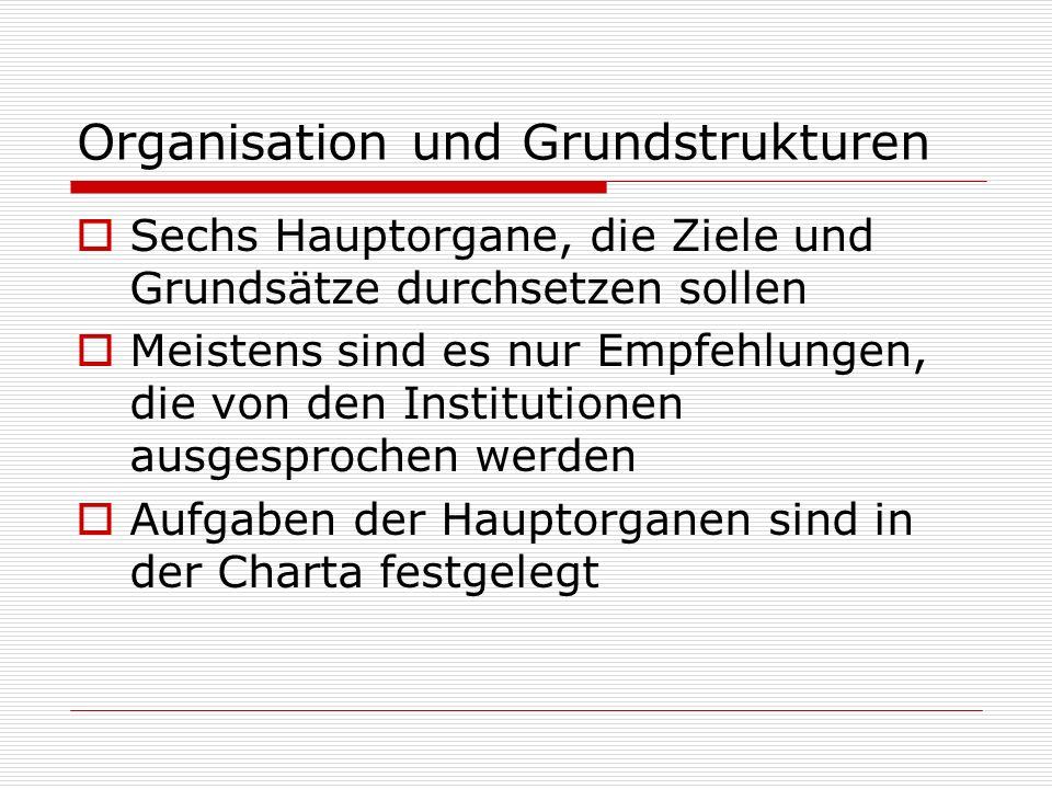 Organisation und Grundstrukturen