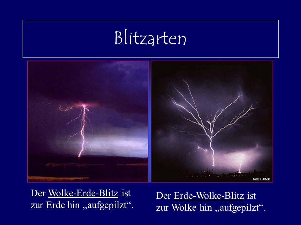 """Blitzarten Der Wolke-Erde-Blitz ist zur Erde hin """"aufgepilzt ."""