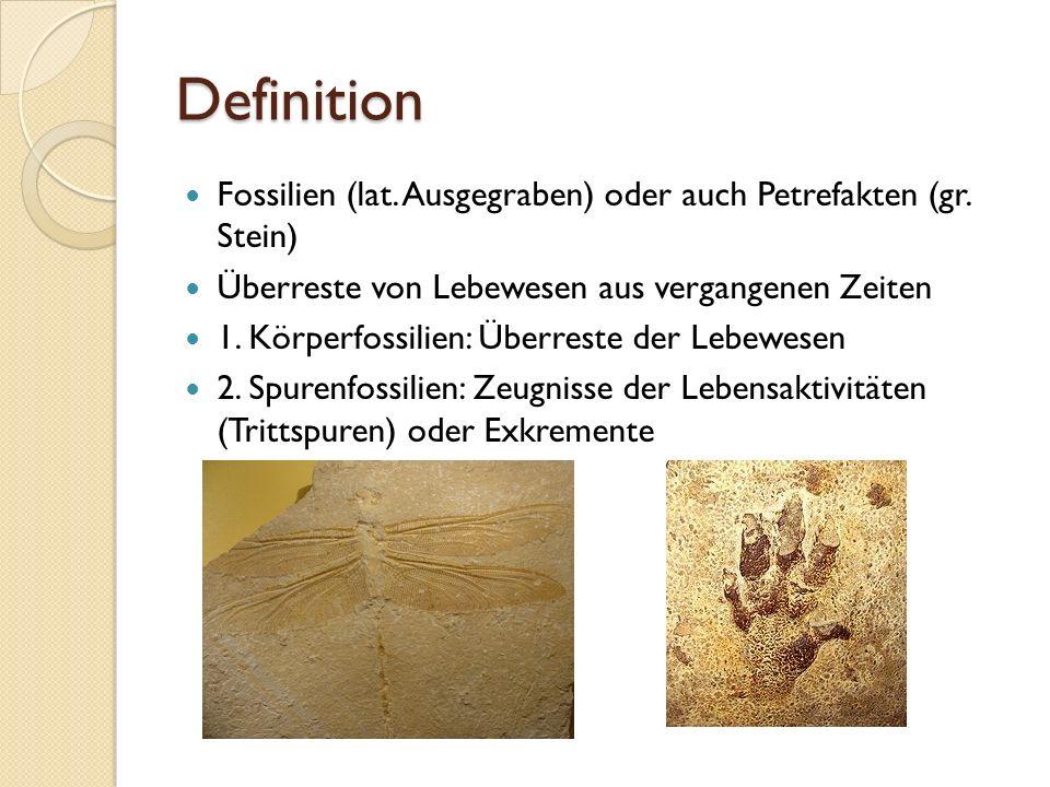 Definition Fossilien (lat. Ausgegraben) oder auch Petrefakten (gr. Stein) Überreste von Lebewesen aus vergangenen Zeiten.
