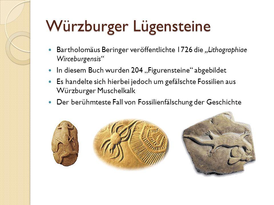 Würzburger Lügensteine