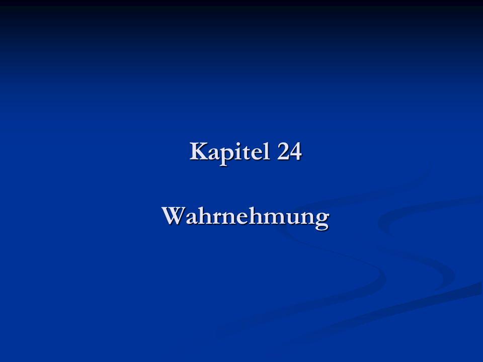 Kapitel 24 Wahrnehmung