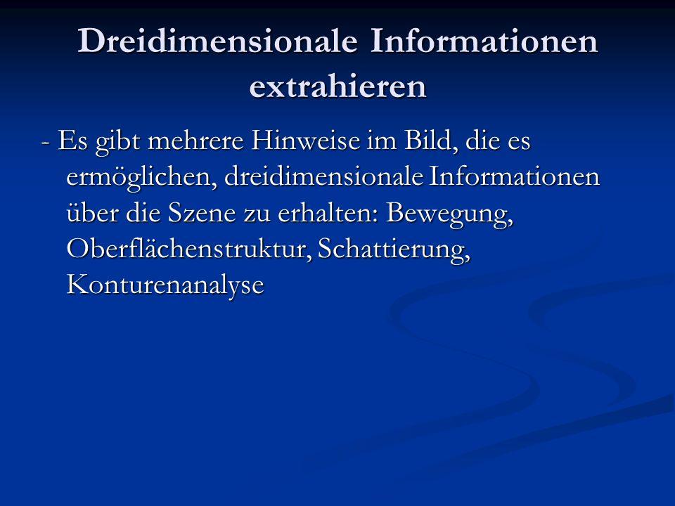 Dreidimensionale Informationen extrahieren