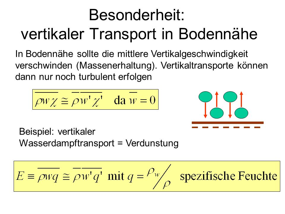 Besonderheit: vertikaler Transport in Bodennähe