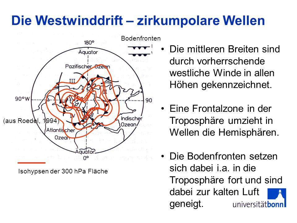 Die Westwinddrift – zirkumpolare Wellen