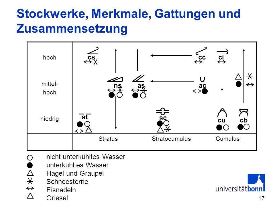 Stockwerke, Merkmale, Gattungen und Zusammensetzung