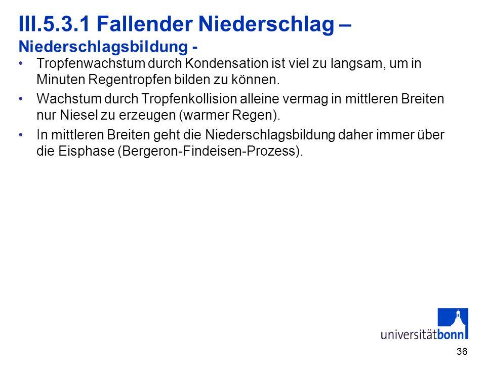 III.5.3.1 Fallender Niederschlag – Niederschlagsbildung -