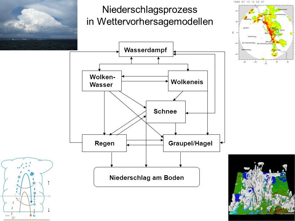 Niederschlagsprozess in Wettervorhersagemodellen
