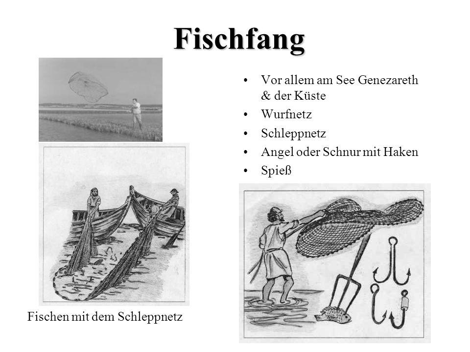 Fischfang Vor allem am See Genezareth & der Küste Wurfnetz Schleppnetz