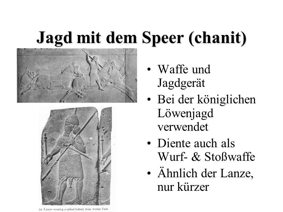 Jagd mit dem Speer (chanit)