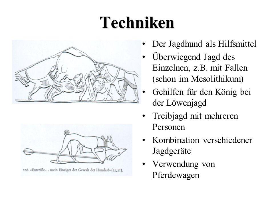 Techniken Der Jagdhund als Hilfsmittel