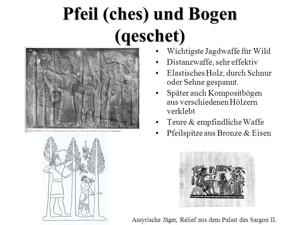 Pfeil (ches) und Bogen (qeschet)