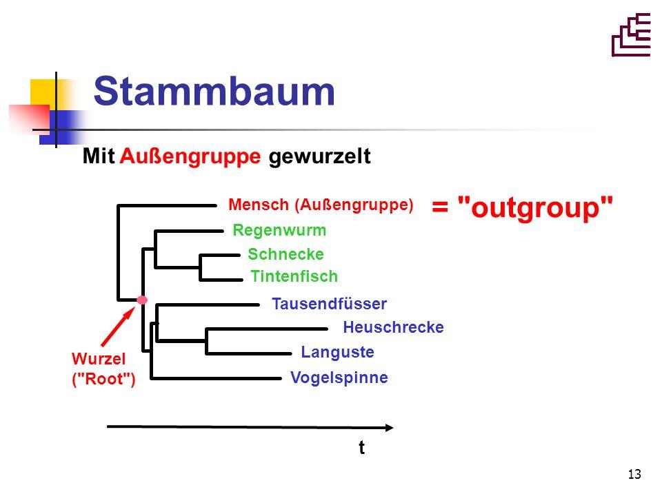 Stammbaum = outgroup Mit Außengruppe gewurzelt t