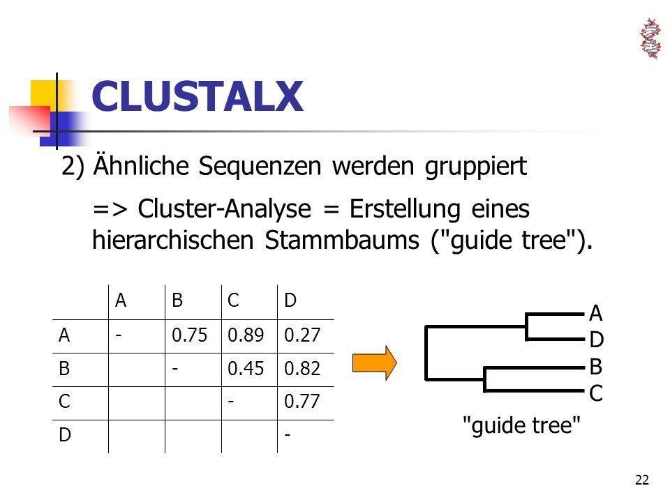 CLUSTALX 2) Ähnliche Sequenzen werden gruppiert
