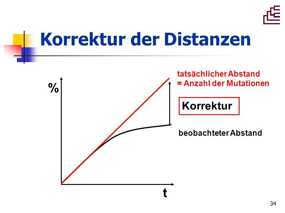 Korrektur der Distanzen