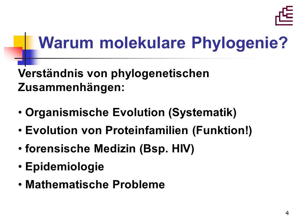 Warum molekulare Phylogenie