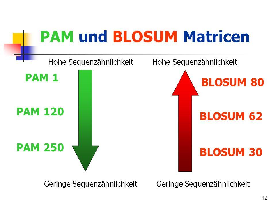 PAM und BLOSUM Matricen