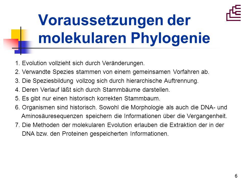 Voraussetzungen der molekularen Phylogenie