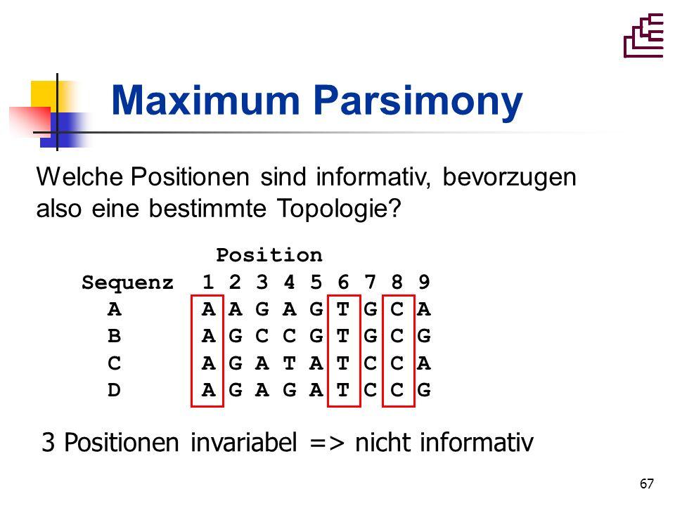 Maximum Parsimony Welche Positionen sind informativ, bevorzugen also eine bestimmte Topologie Position.
