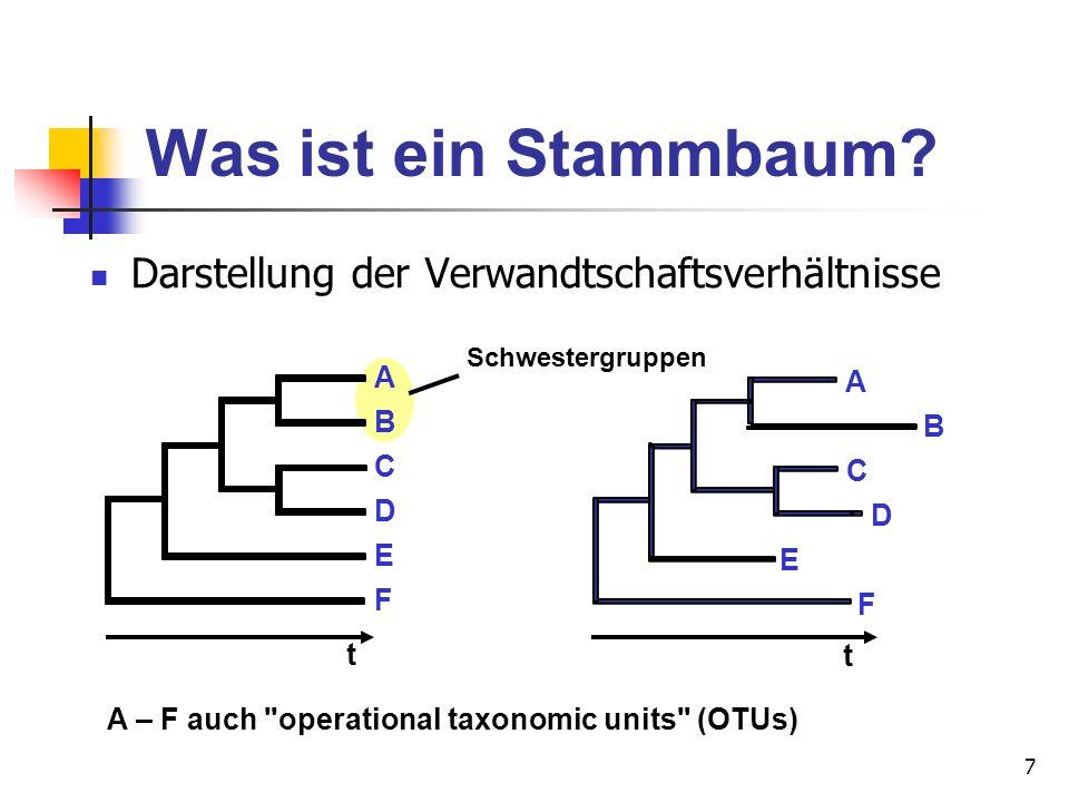 Was ist ein Stammbaum Darstellung der Verwandtschaftsverhältnisse A A