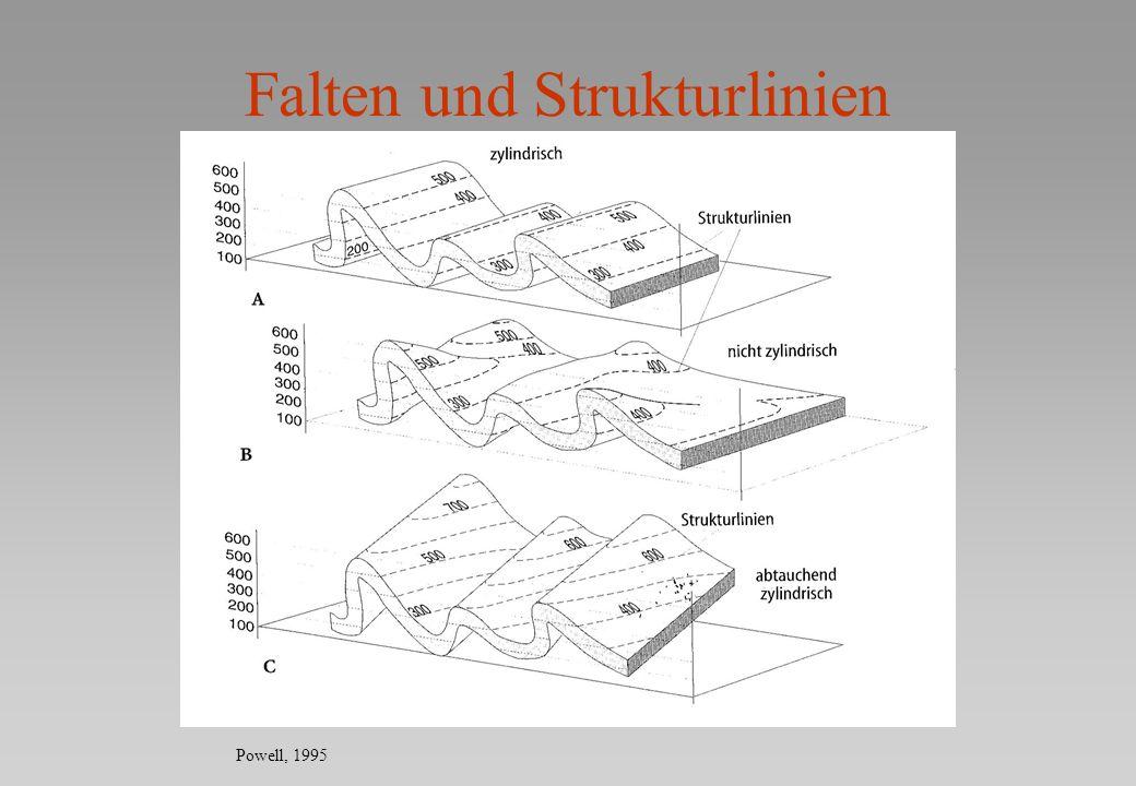 Falten und Strukturlinien