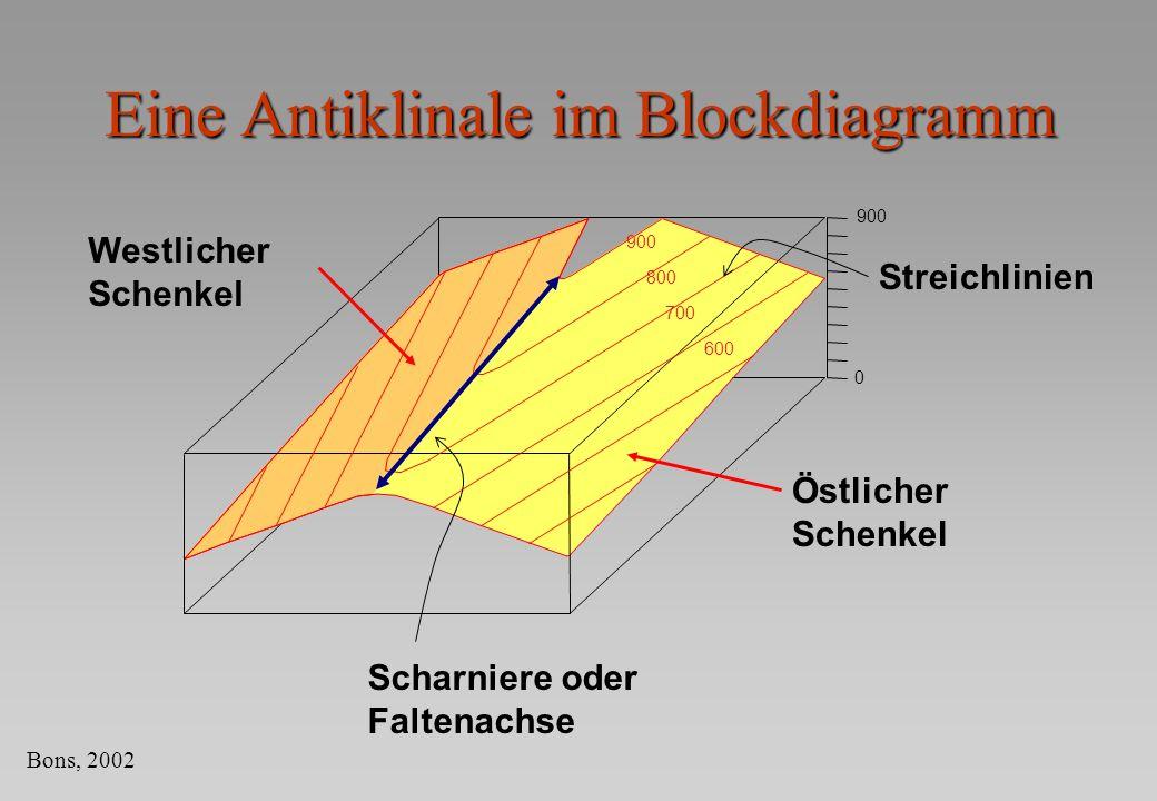 Eine Antiklinale im Blockdiagramm