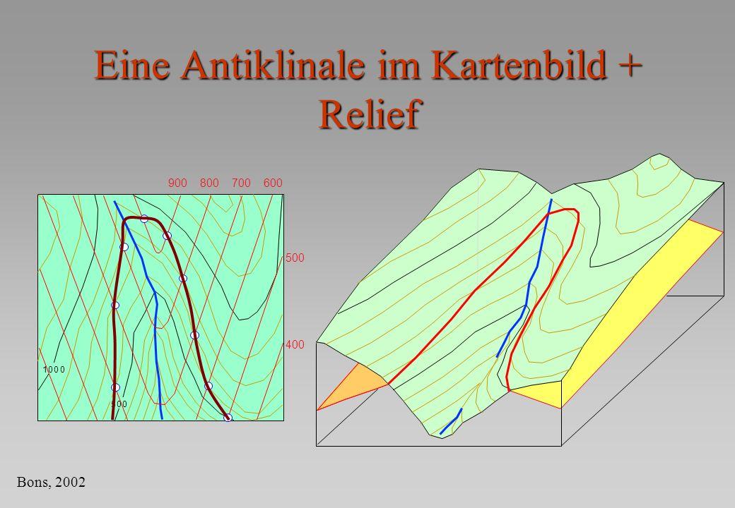 Eine Antiklinale im Kartenbild + Relief