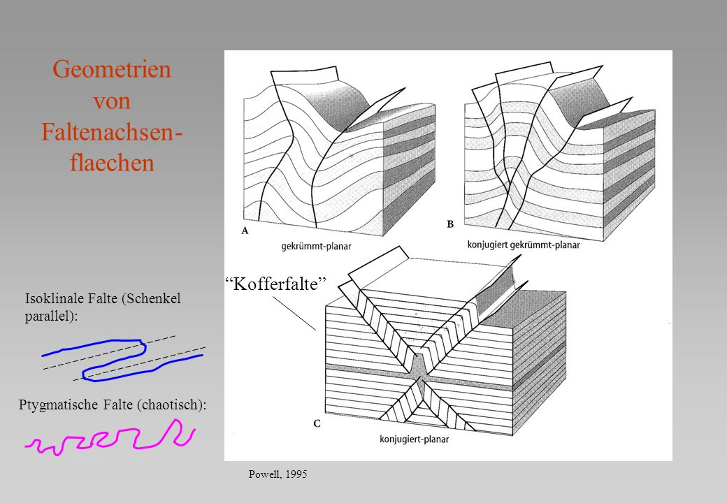 Geometrien von Faltenachsen-flaechen