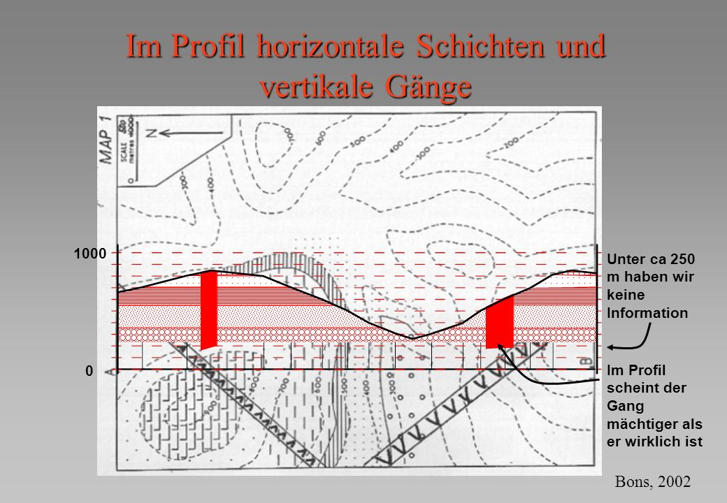 Im Profil horizontale Schichten und vertikale Gänge
