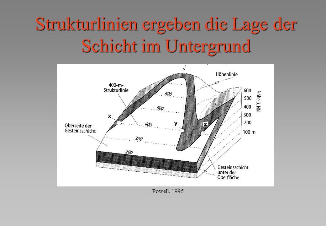 Strukturlinien ergeben die Lage der Schicht im Untergrund