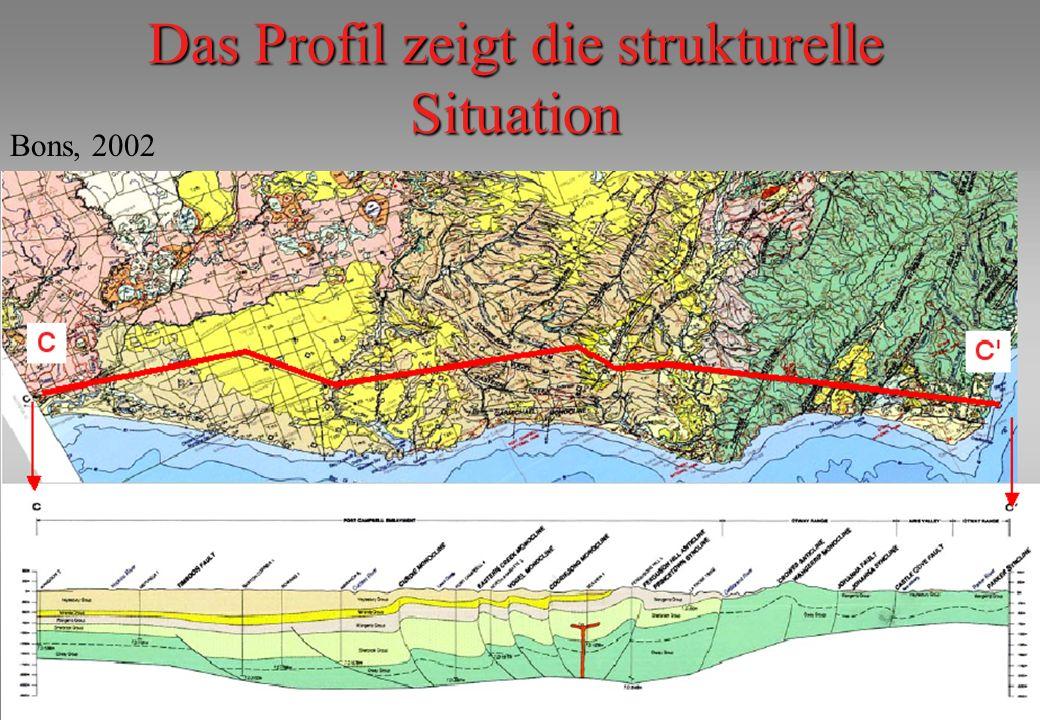 Das Profil zeigt die strukturelle Situation