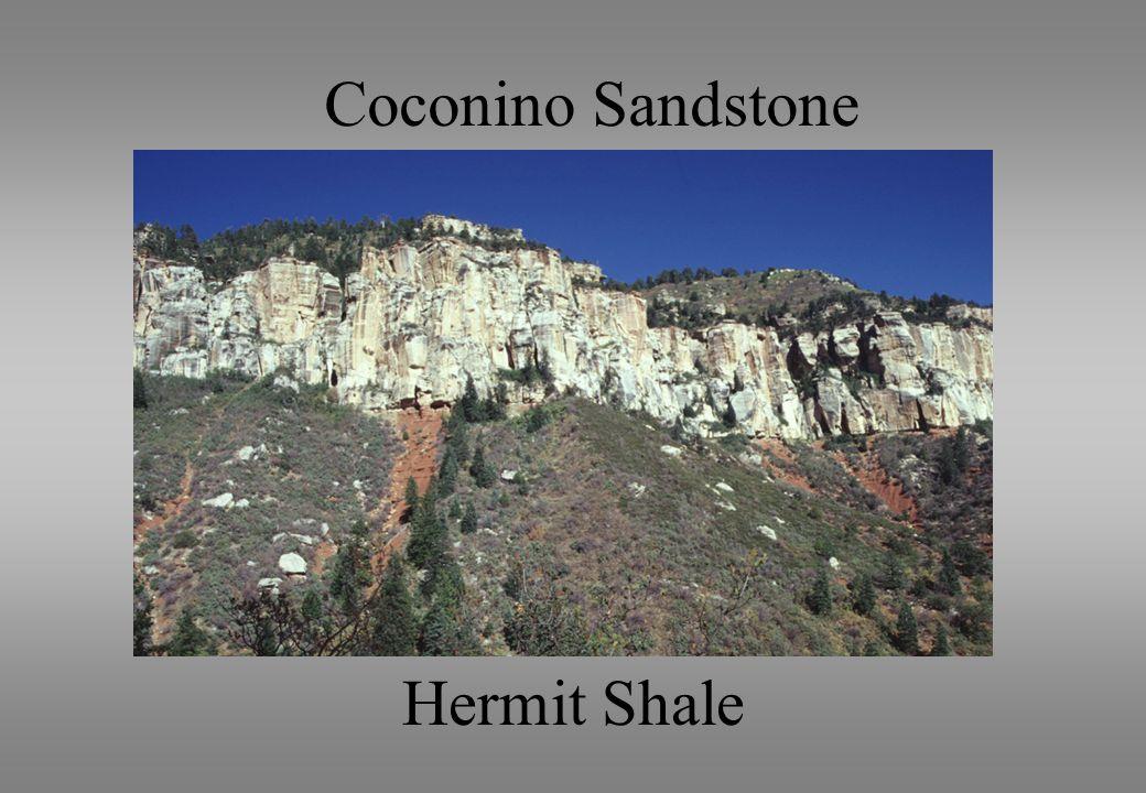 Coconino Sandstone Hermit Shale