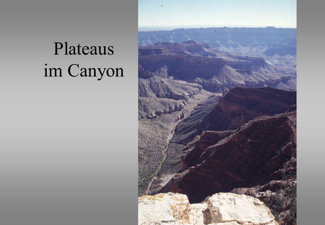 Plateaus im Canyon