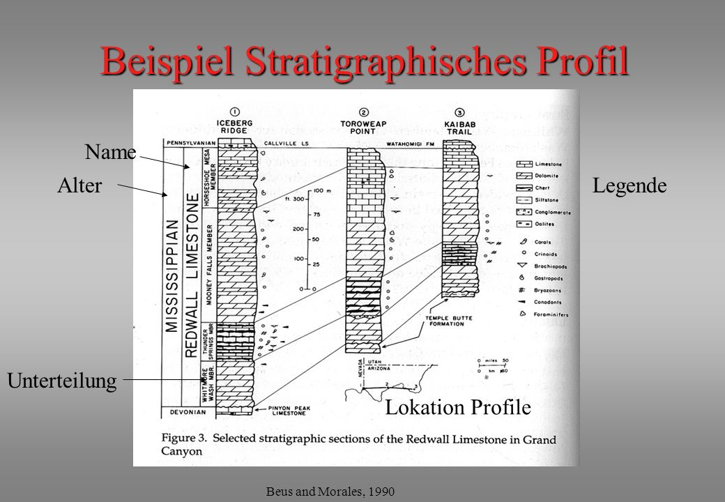 Beispiel Stratigraphisches Profil