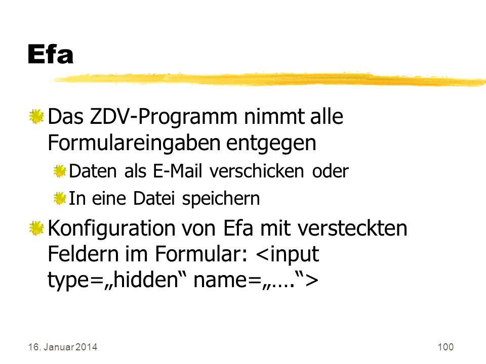 Efa Das ZDV-Programm nimmt alle Formulareingaben entgegen