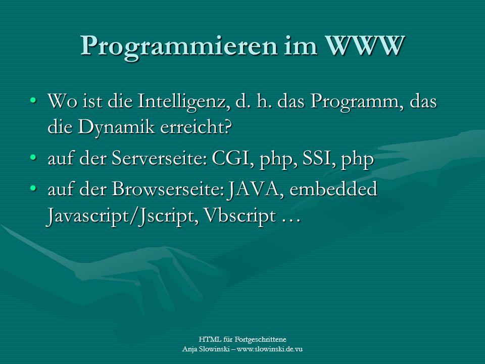 Programmieren im WWW Wo ist die Intelligenz, d. h. das Programm, das die Dynamik erreicht auf der Serverseite: CGI, php, SSI, php.