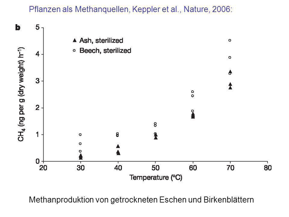 Pflanzen als Methanquellen, Keppler et al., Nature, 2006: