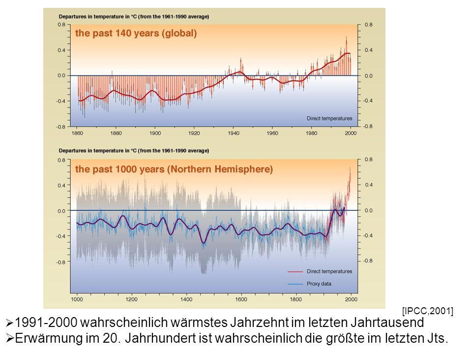 1991-2000 wahrscheinlich wärmstes Jahrzehnt im letzten Jahrtausend