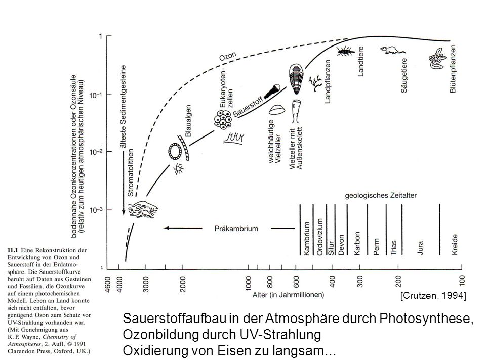 Sauerstoffaufbau in der Atmosphäre durch Photosynthese,