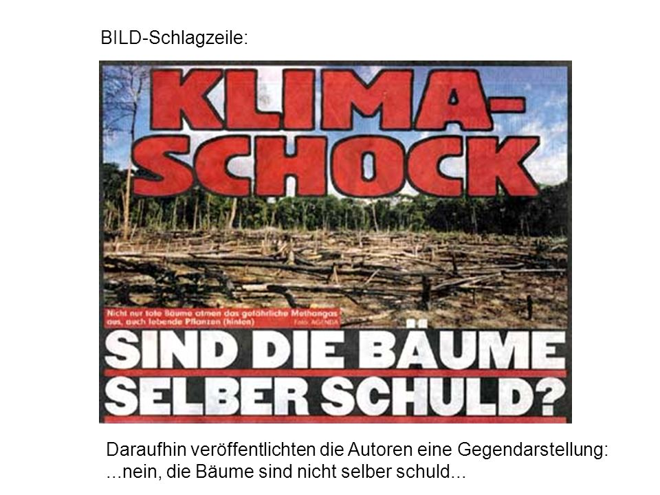 BILD-Schlagzeile: Daraufhin veröffentlichten die Autoren eine Gegendarstellung: ...nein, die Bäume sind nicht selber schuld...