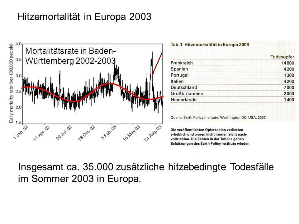 Hitzemortalität in Europa 2003