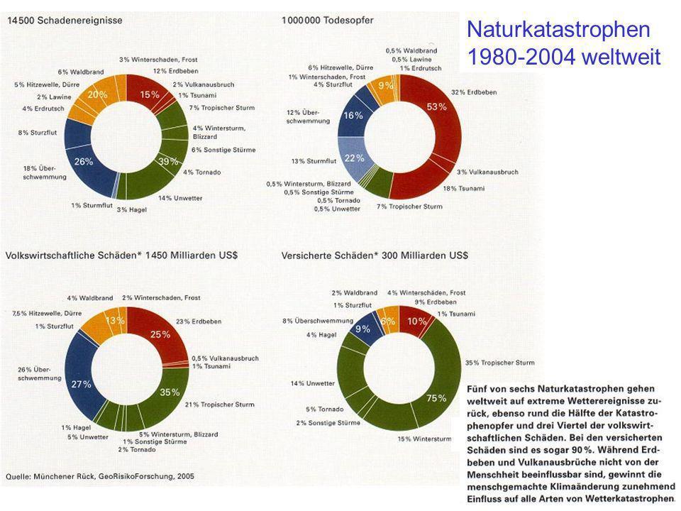 Naturkatastrophen 1980-2004 weltweit