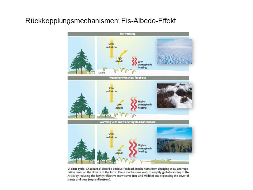 Rückkopplungsmechanismen: Eis-Albedo-Effekt