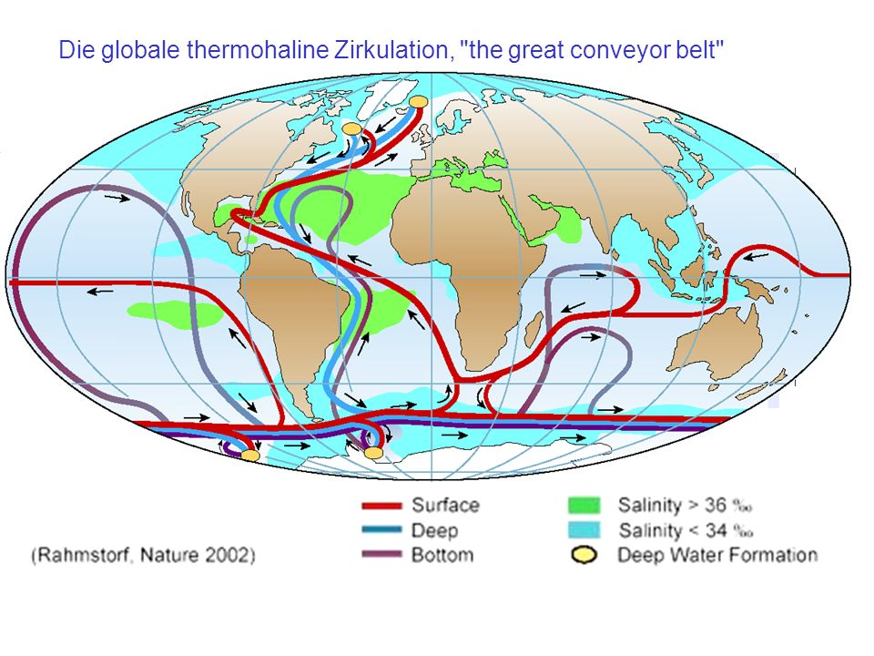 Die globale thermohaline Zirkulation, the great conveyor belt