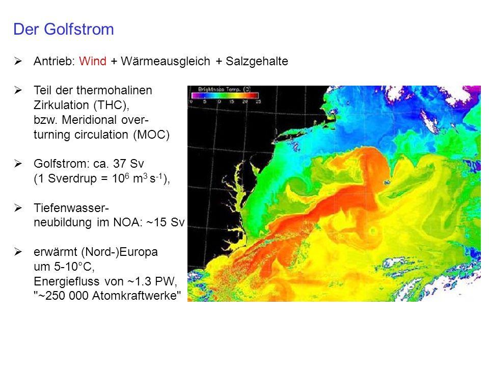 Der Golfstrom Antrieb: Wind + Wärmeausgleich + Salzgehalte