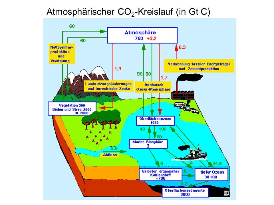 Atmosphärischer CO2-Kreislauf (in Gt C)