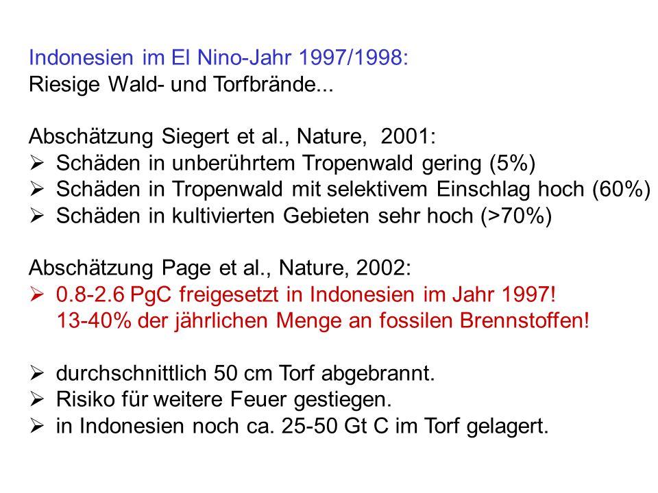 Indonesien im El Nino-Jahr 1997/1998: