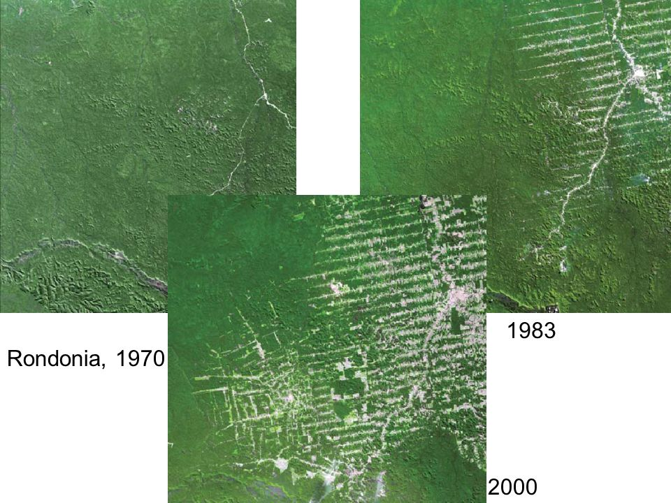 1983 2000 Rondonia, 1970