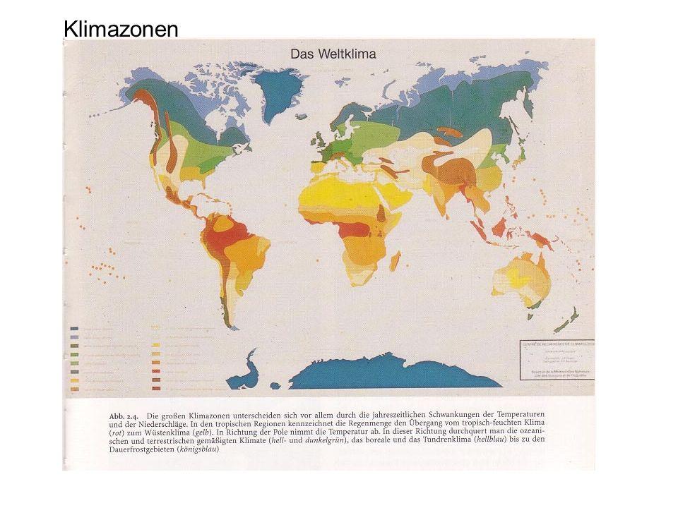 Klimazonen